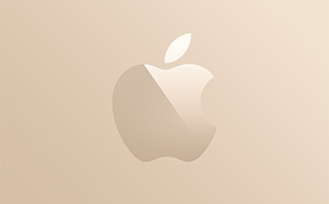 Apple Store gift cards and vouchers